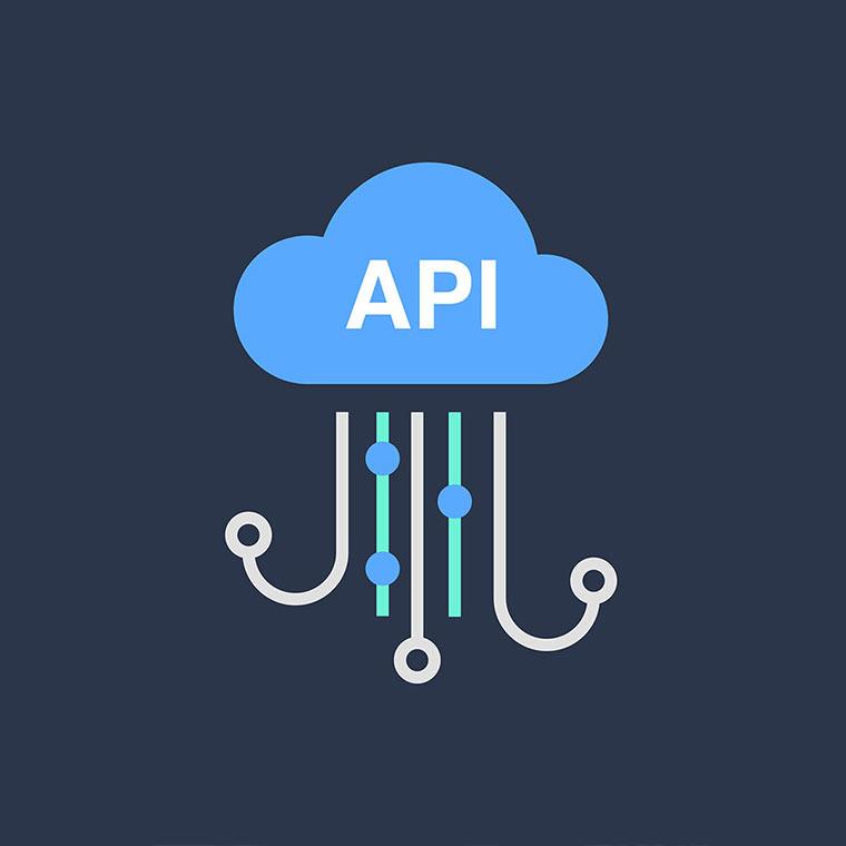 imagine servicii REST API